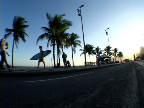 stockvideo's en b-roll-footage met ms, la, brazil, rio de janeiro, people on street along ipanema beach - waaierpalm