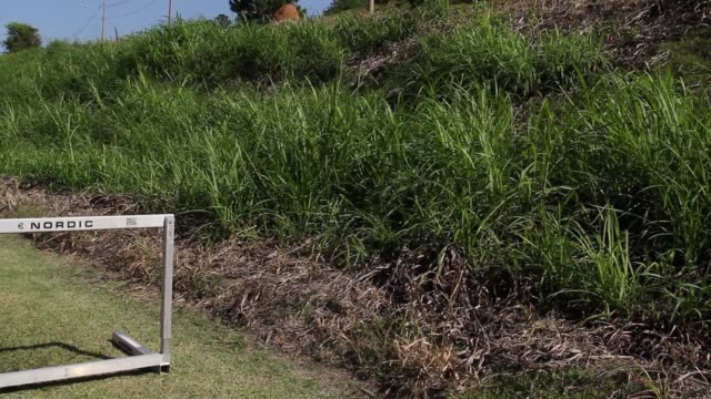 BRA: A Day with Olympic Athlete Marcio Teles Amidst the Coronavirus (COVID - 19) Pandemic