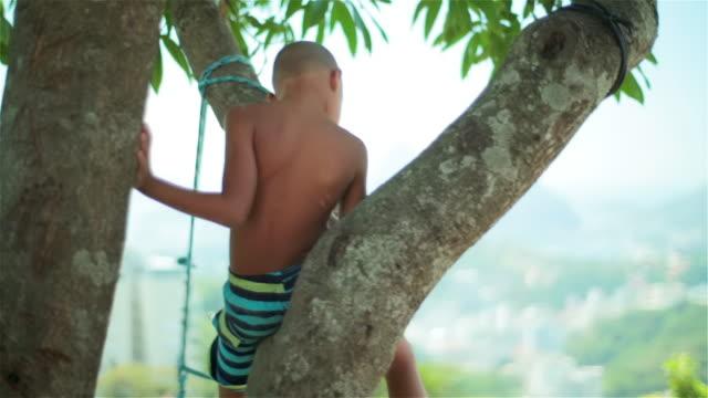 vídeos de stock, filmes e b-roll de brazilian boy sitting in tree turns and smiles at camera - calção