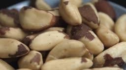 Brazilian Cashew Nut