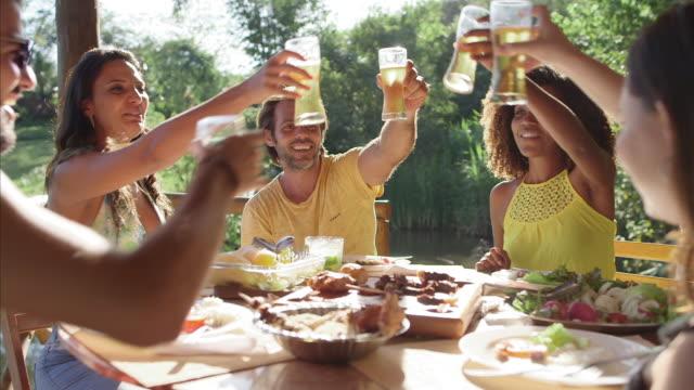 MS Brazilian friends raise glasses in a toast / Maringa, Brazil