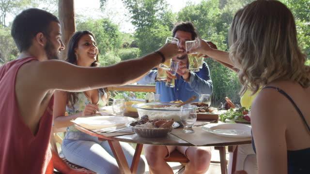 vídeos de stock e filmes b-roll de ms brazilian friends raise glasses in a toast / maringa, brazil - party social event