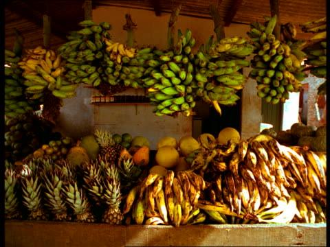 A Brazilian fruit stand displays pineapples, plantains, and melons.