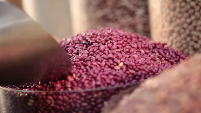 ms brazilian typical grains / food beans / sao paulo, brazil - legume family stock videos and b-roll footage