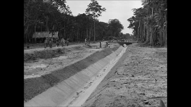 vídeos de stock e filmes b-roll de brazilians constructing sewer system ms workers around sewer pipe ha ms water out of sewers cleanliness sanitation water way canal health pipeline - 1944