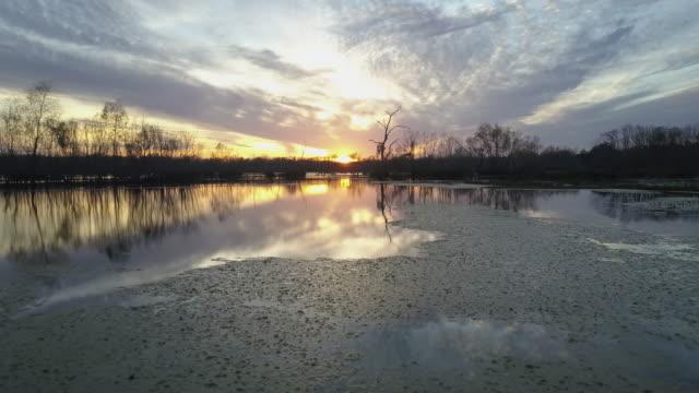 vídeos de stock, filmes e b-roll de brazos bend state park at sunset - pântano