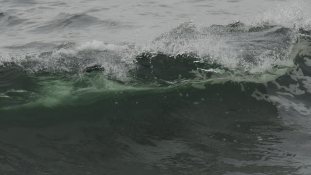 "slomo breaker wave rolls in from atlantic ocean - ""bbc natural history"" stock videos & royalty-free footage"