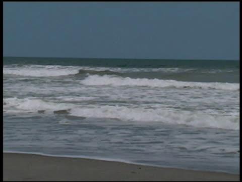 vídeos y material grabado en eventos de stock de romper de las olas del mar's edge - formato buzón