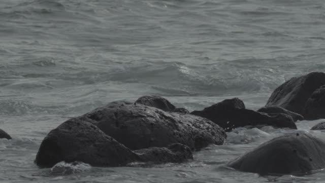 vidéos et rushes de breaking waves / jeju-do, south korea - plaque de montage fixe