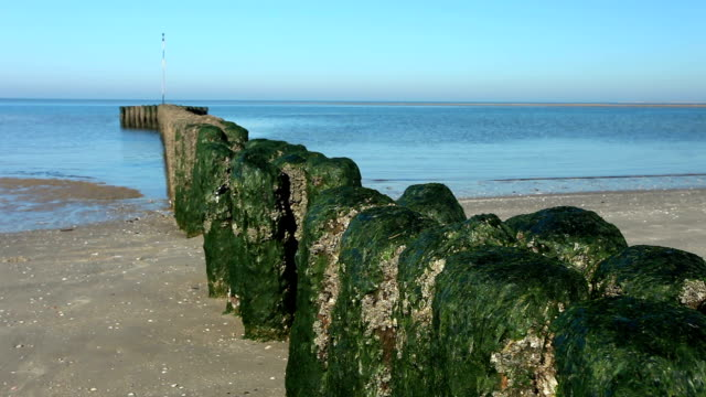 breakwater on the beach - dagger stock videos & royalty-free footage