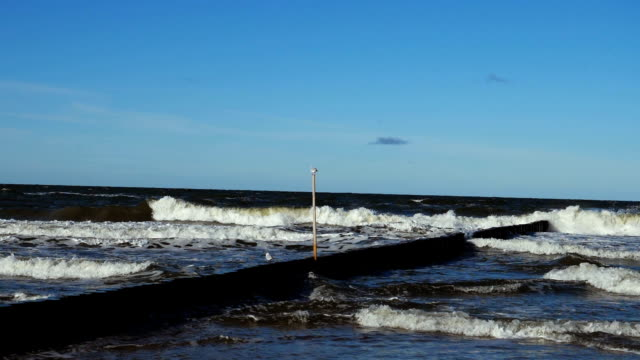 breakwater.crashing waves. seagull. masses of sand carried by the waves.beautiful weather and perfect light.view from the ocean shore.version 5 - baltic sea stock videos and b-roll footage