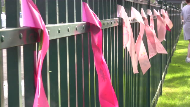 Brust-Krebs-3 Tage-Race for the Cure