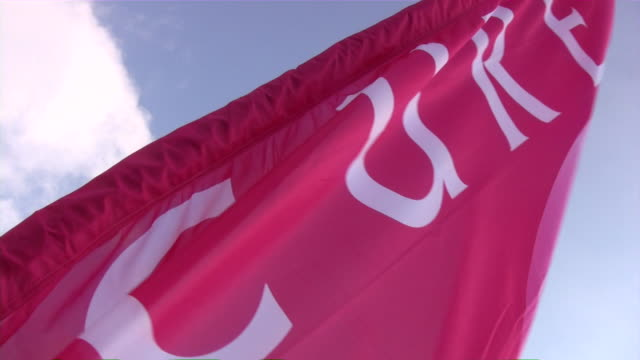 Breast Cancer 3-Day Race for the Cure