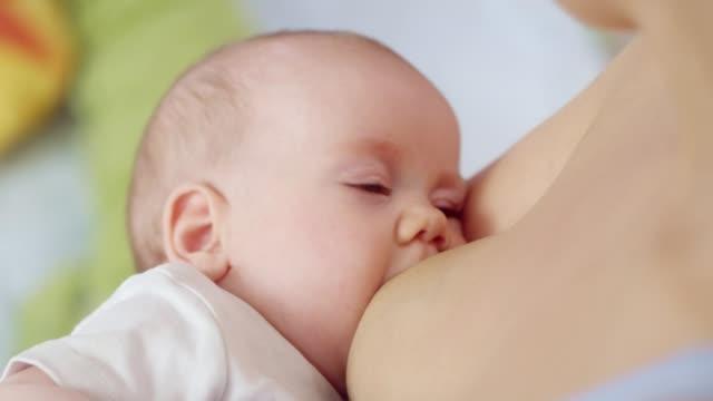 breastfeeding - image stock videos & royalty-free footage