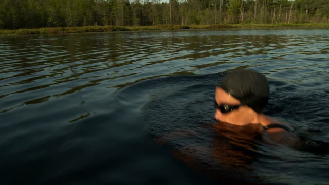 breaststroke in the wild - swimming cap stock videos and b-roll footage
