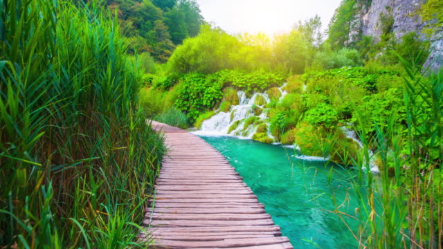 STEADYCAM: Breathtaking  Nature in Plitvice Lakes National Park