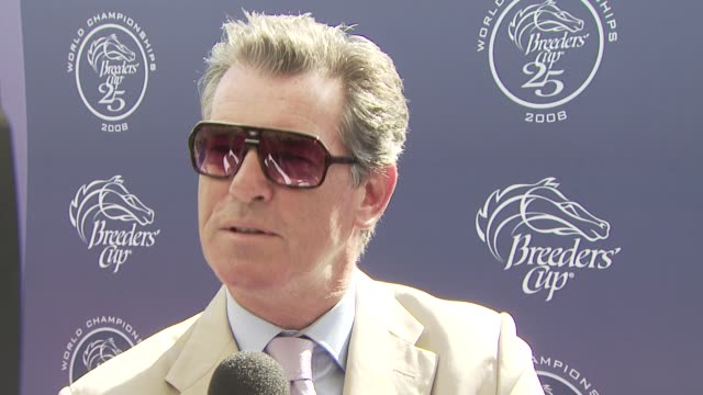 breeders' cup world thoroughbred championships los angeles ca 10/25/08 - keely shaye smith and pierce brosnan stock videos & royalty-free footage