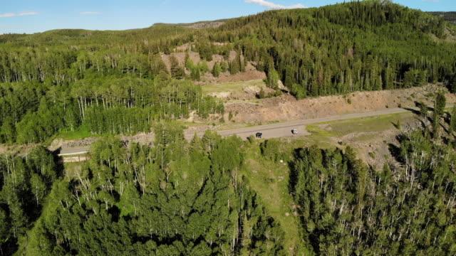 vídeos y material grabado en eventos de stock de breezy sunny summer day aerial 4k video del bosque nacional grand mesa - árbol de hoja caduca