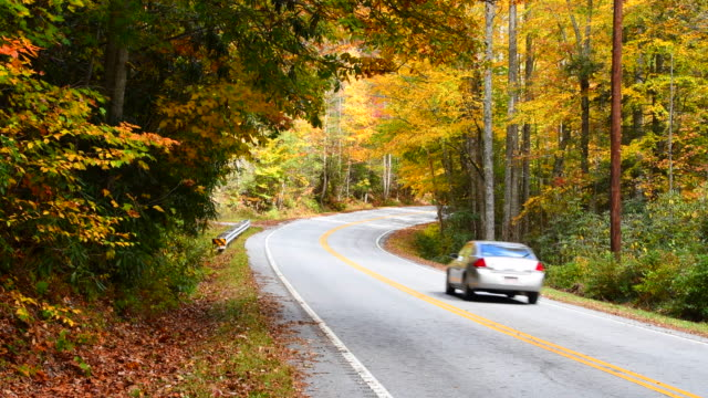 Brevard North Carolina Fall Colors and cars on Blue Ridge Highway near Asheville in famous scenic road drive 4K,