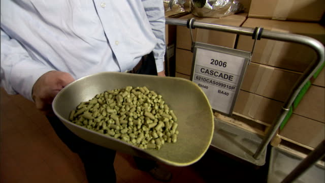 a brewer  inspects a ladle of hops. - ladle stock videos & royalty-free footage