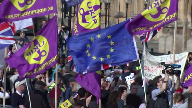 abingdon street gardens protest gvs england london westminster abbingdon green / college green ext wide view protesters outside parliament with ukip... - protestor stock videos & royalty-free footage