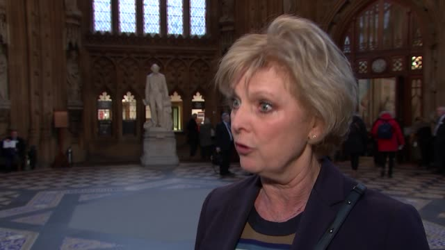 Anna Soubry interview ENGLAND London Westminster Central Lobby INT Anna Soubry MP interview SOT Everybody should put forward the national interest...