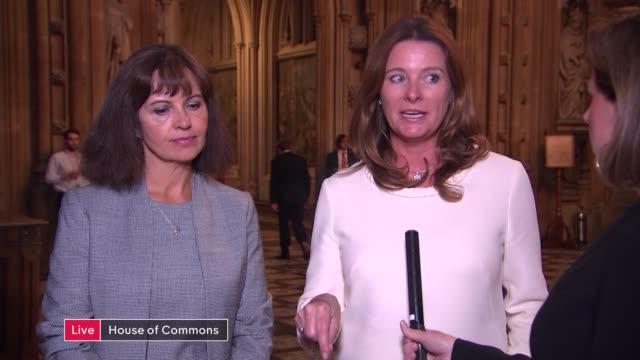 boris johnson proposes early general election england london westminster house of commons lobby int layla moran mp caroline flint mp and gillian... - ジャッキー ロング点の映像素材/bロール