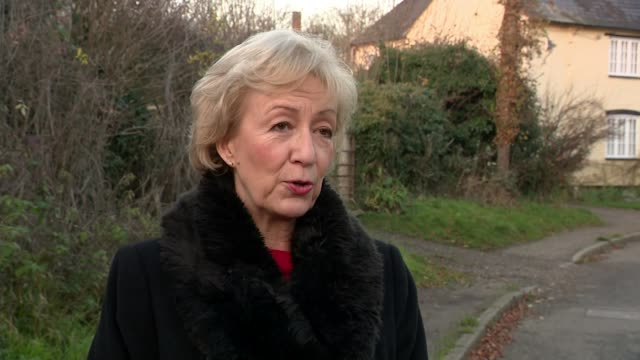 Brexiteers in Cabinet call on Theresa May to improve withdrawal deal ENGLAND Northamptonshire Andrea Leadsom MP interview SOT working to support...
