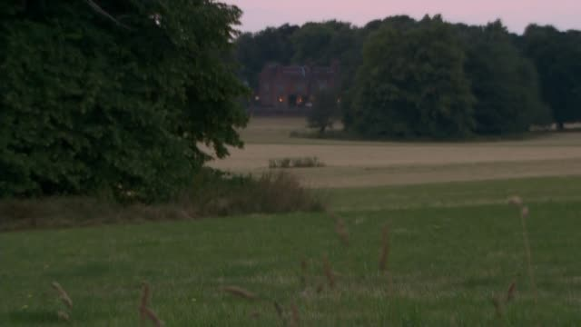 cabinet agree soft brexit negotiating position with the eu england buckinghamshire chequers ext long shots of chequers at dusk evening sky with tress... - バッキンガムシャー点の映像素材/bロール