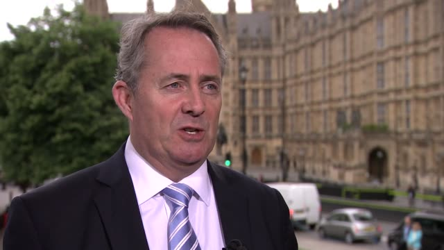 battle for conservative party leadership: liam fox interview; liam fox mp interview sot - think about standing for the leadership / let the bruises... - 記事点の映像素材/bロール