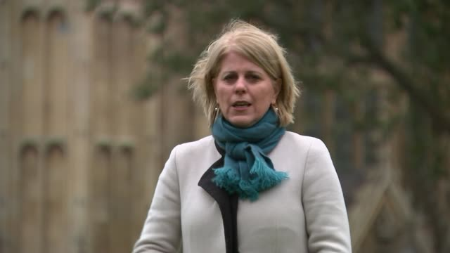 Theresa May backs right of newspapers to criticize High Court judges Westminster Reporter to camera SOT