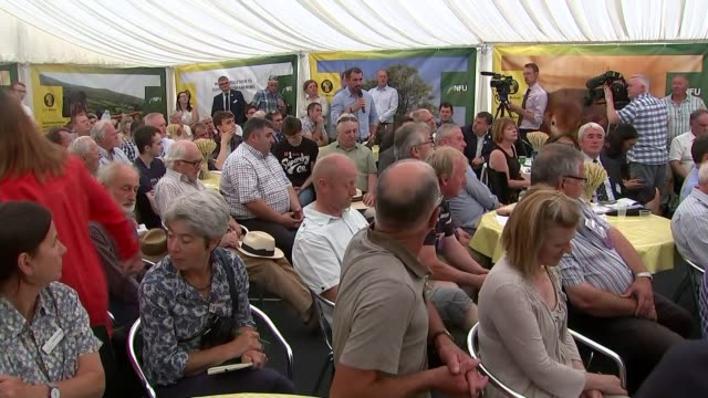 farming industry leaders warn about risks of no-deal scenario; wales: powys: ext various shots farmers and cows at royal welsh show farmer pulling... - national farmers union stock videos & royalty-free footage