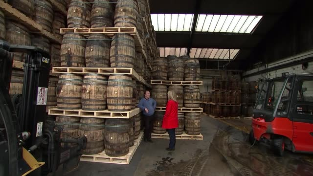 german chancellor angela merkel meets with taoiseach leo varadkar ireland county louth great northern distillery gvs ireland county louth dundalk int... - chancellor of germany stock videos & royalty-free footage
