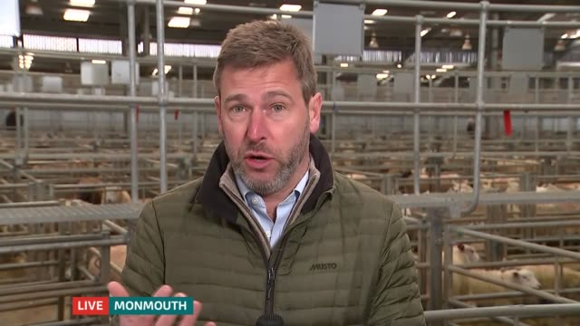 government publishes plan for tariffs in no deal scenario; wales: monmouthshire: wales: int reporter to camera john davies live interview sot... - national farmers union stock videos & royalty-free footage