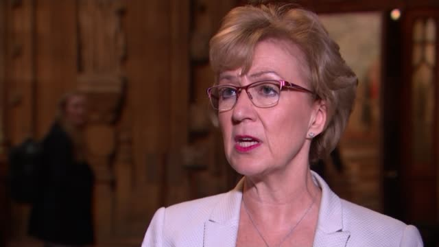 jeremy corbyn confirms that labour will back second referendum but also pursue other options england london westminster int andrea leadsom mp set up... - andrea leadsom stock-videos und b-roll-filmmaterial