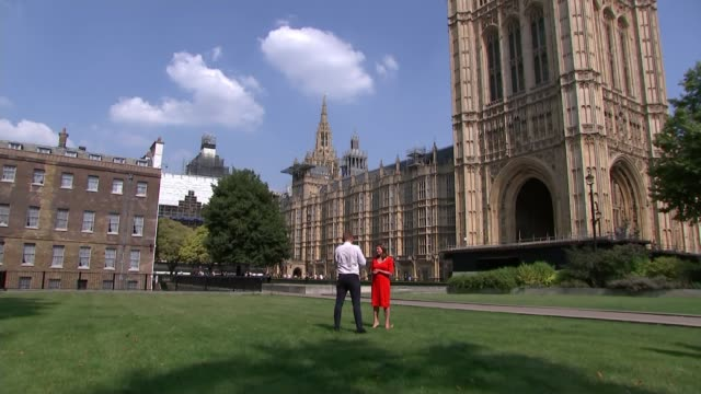no deal opponents make pact to try to change law england london westminster ext general view victoria tower tilt jo swinson mp interview sot - agreement stock videos & royalty-free footage