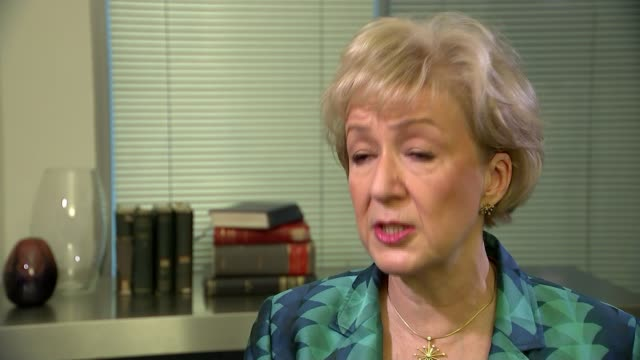 theresa may insists government ministers are united on the withdrawal agreement after andrea leadsom and amber rudd discuss alternatives england int... - andrea leadsom stock-videos und b-roll-filmmaterial