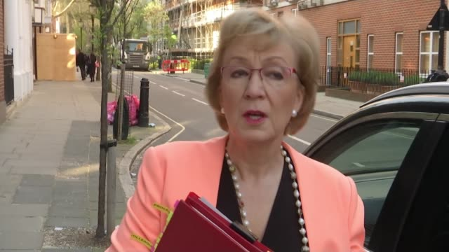 theresa may talks of her regret at further brexit delay as she faces further calls for her resignation england london ext andrea leadsom mp from... - andrea leadsom stock-videos und b-roll-filmmaterial