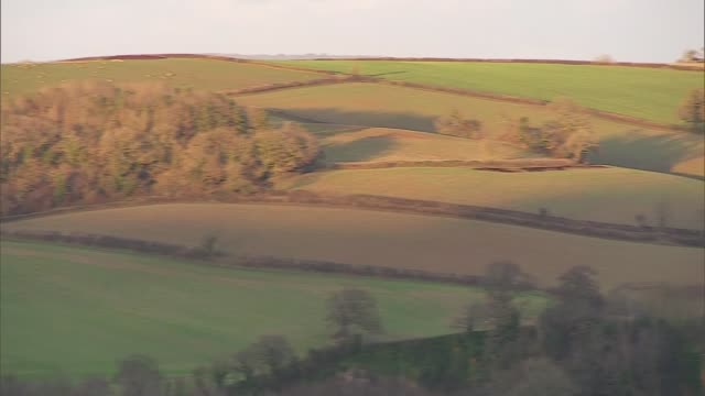 Withdrawal agreement voted down Views from Leave and Remain voting areas ENGLAND South Devon EXT View over farm fields some with sheep grazing View...