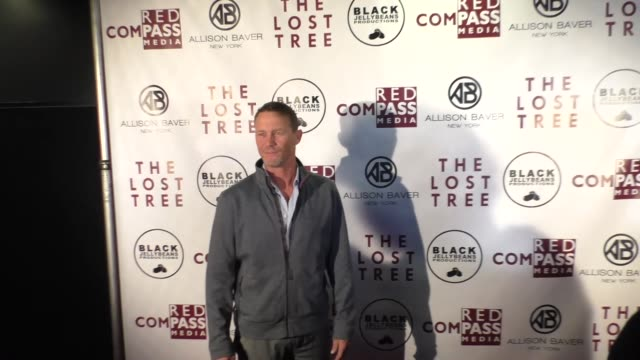 brian krause at the 'the lost tree' screening at tcl chinese 6 theatres on october 09 2017 in hollywood california - the lost tree stock videos and b-roll footage
