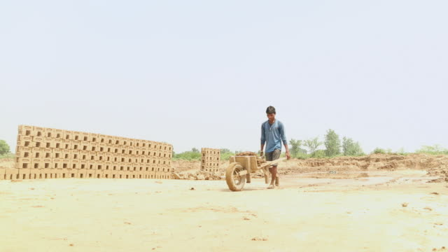 Brick factory worker pulling cart, Haryana, India