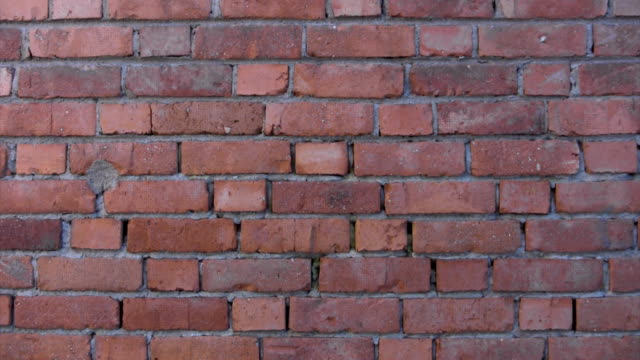 brick wall background, zoom effect - brick stock videos & royalty-free footage