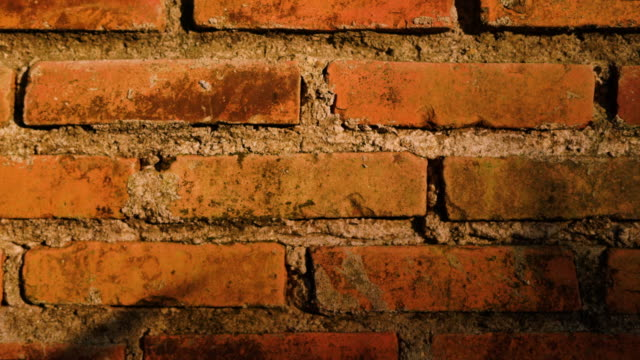 夕焼けライトチルトショットのレンガの壁 - 起伏のある点の映像素材/bロール
