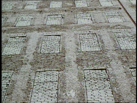 Bricks seal windows in East Germany to separate part of Berlin from West Germany