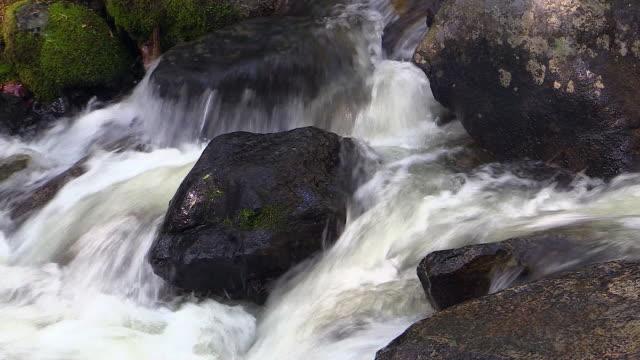 bridalveil fall stream, yosemite national park, california - bridal veil falls yosemite stock videos & royalty-free footage