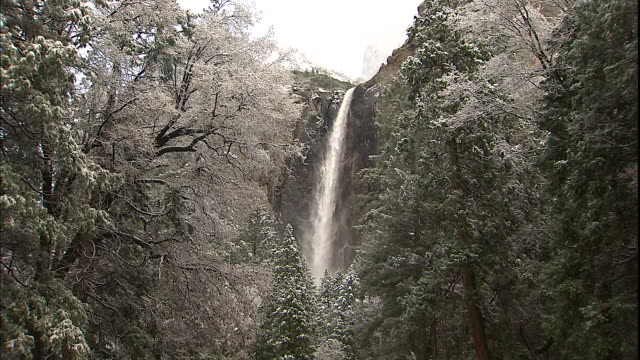bridalveil falls tumbles behind a snowy forest in yosemite national park. - yosemite national park stock videos & royalty-free footage