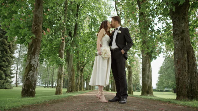 slo mo ds bride and groom kissing in the park - bridegroom stock videos and b-roll footage