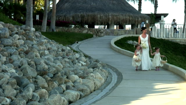 ws, bride walking down beach path with two girls (4-5), cabo san lucas, mexico - fan palm tree stock videos & royalty-free footage