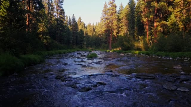bridge creek, oregon - umatilla stock videos and b-roll footage