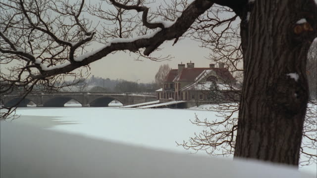 ws bridge crossing frozen charles river and houses in snow, bare tree in foreground / boston, massachusetts, usa - river charles stock videos & royalty-free footage